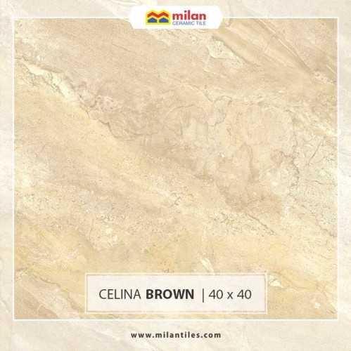 Celina Brown FinishesFloor CoveringIndoor Flooring